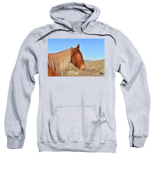 Mustang Mare Sweatshirt