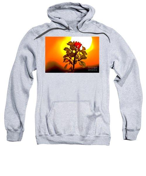 Mustard Sunset Sweatshirt