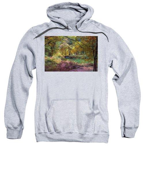 My World Of Color Sweatshirt