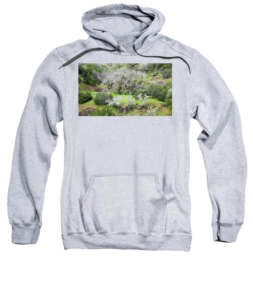 Mysterious Landscape In Sonoma County Sweatshirt