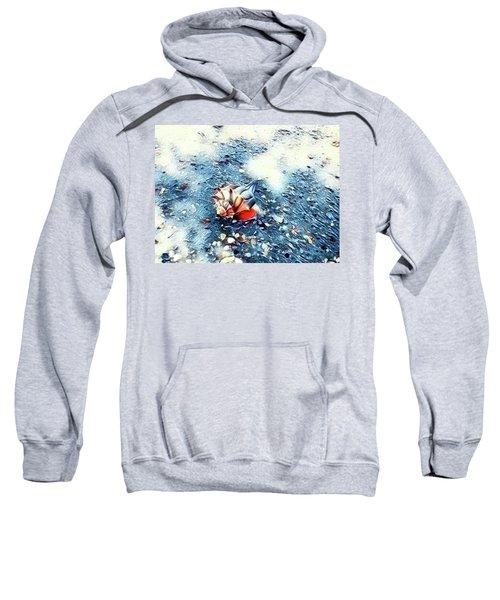 Mystic Conch Sweatshirt