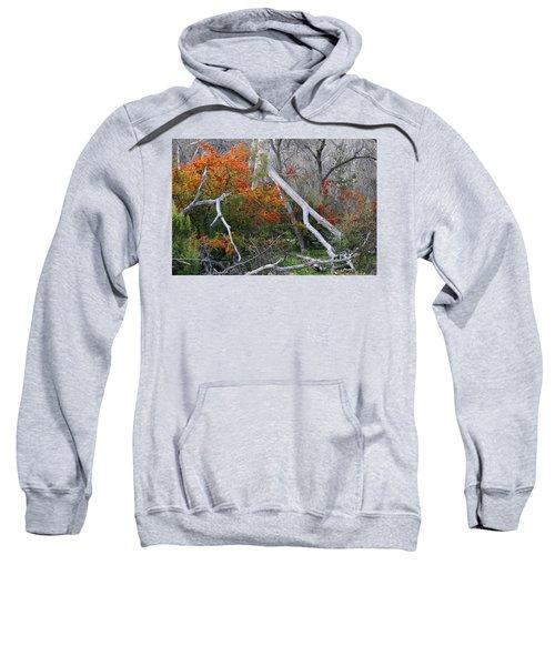Mystical Woodland Sweatshirt