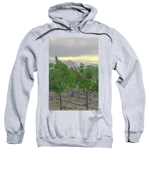 Napa Valley At Dawn Sweatshirt