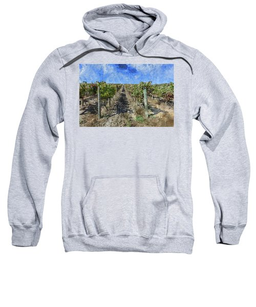 Napa Valley Vineyard - Rows Of Grapes Sweatshirt