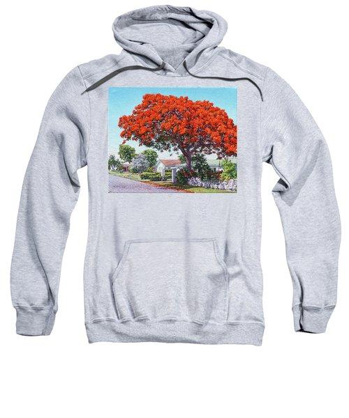 Nassau East Blvd.  Sweatshirt