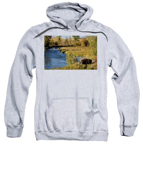 National Bison Range Sweatshirt