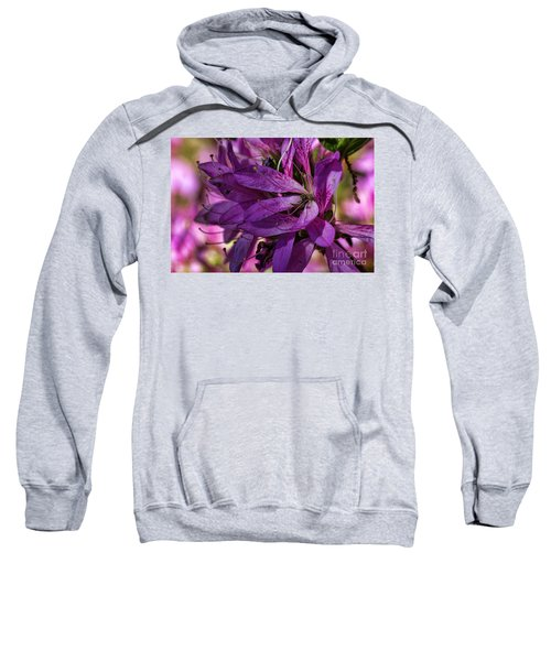 Native Long Petals Sweatshirt