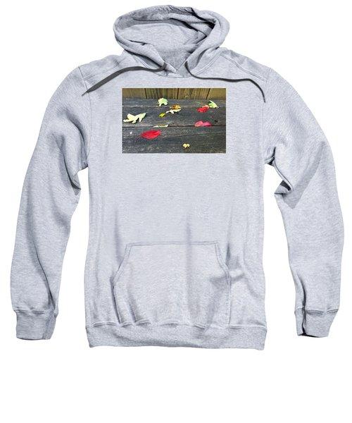 Natural Fall Sweatshirt