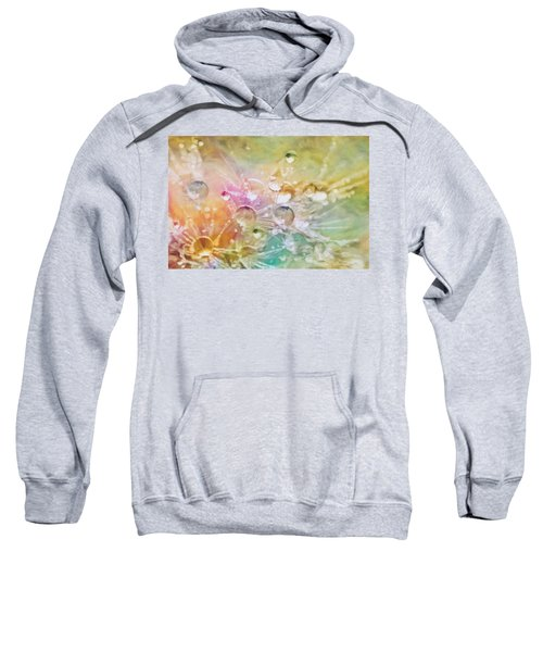 Nature As A Tender Abstraction Sweatshirt