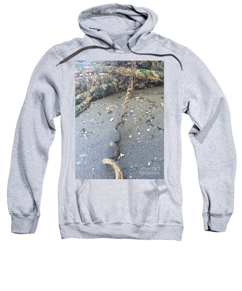 Nature's Spiral Sweatshirt