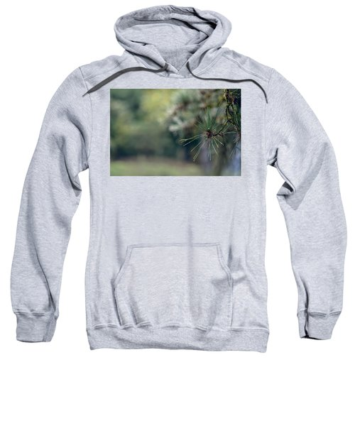 The Needles Sweatshirt