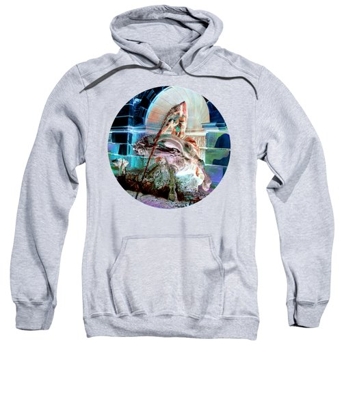 Neptune Nymph 3 Sweatshirt