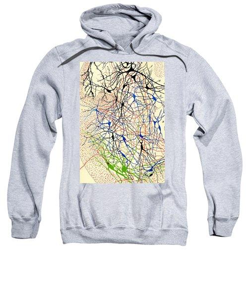 Nerve Cells Santiago Ramon Y Cajal Sweatshirt