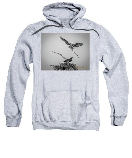Nest Building 2m Sweatshirt