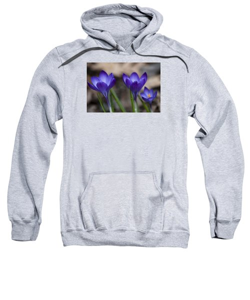 New Life Sweatshirt