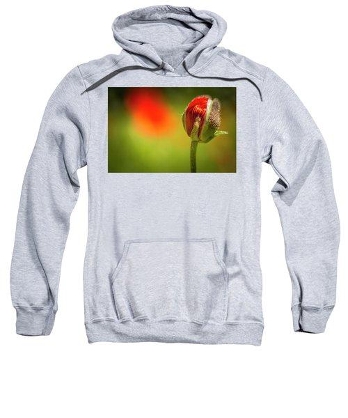 New Orange Poppy Bloom Sweatshirt