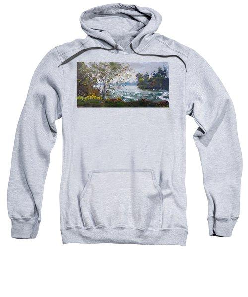 Niagara Falls Park Rapids Sweatshirt