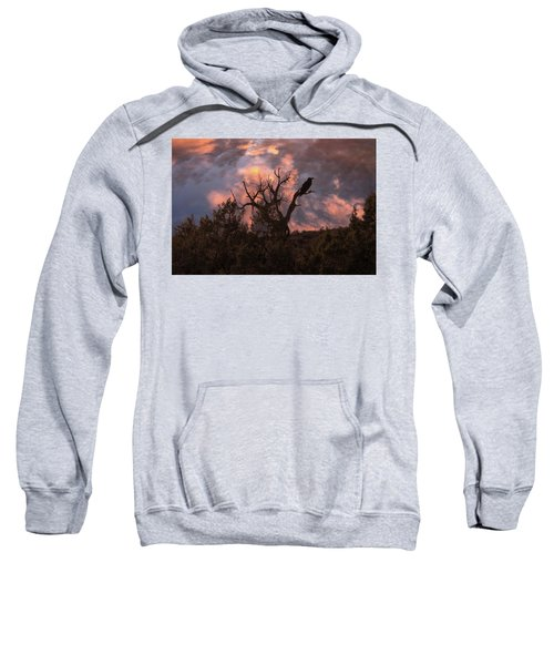 Night Of The Raven Sweatshirt