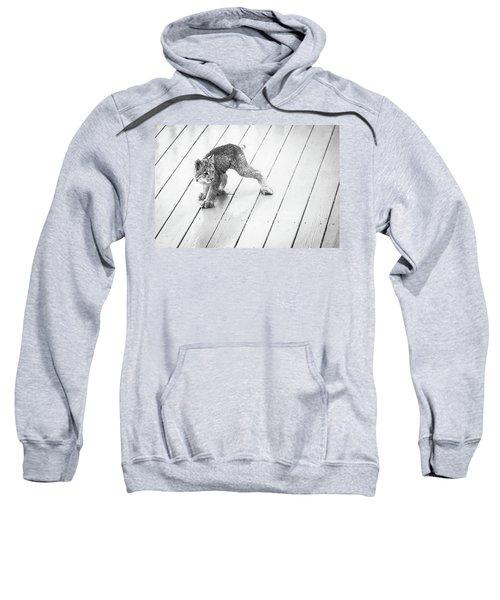 Ninja Lynx Kitty Bw Sweatshirt