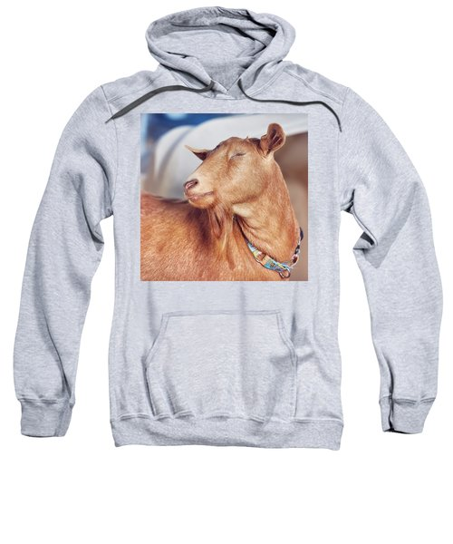 No Autographs And No Pictures Please Sweatshirt