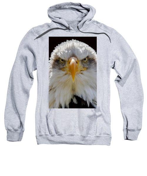 North American Bald Eagle  Sweatshirt