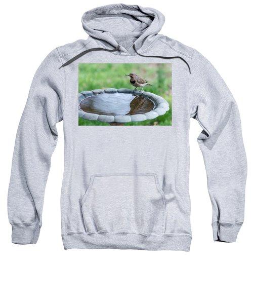 Northern Flicker Reflection New Jersey Sweatshirt