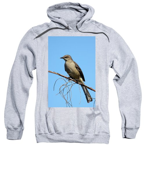 Northern Mockingbird Sweatshirt by Bruce J Robinson