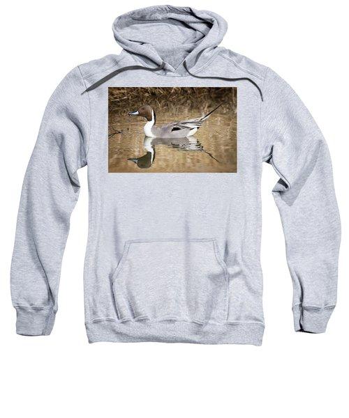 Northern Pintail Drake Sweatshirt