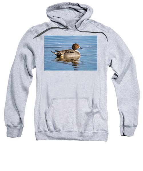 Northern Pintail Duck Sweatshirt