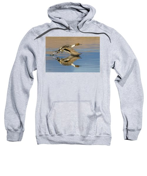 Northern Pintail With Reflection Sweatshirt
