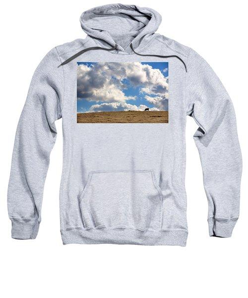 Not A Cow In The Sky Sweatshirt