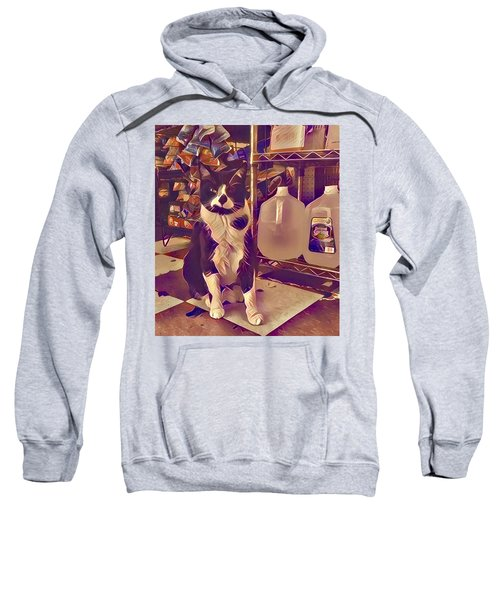 Nyc Bodega Cat Sweatshirt