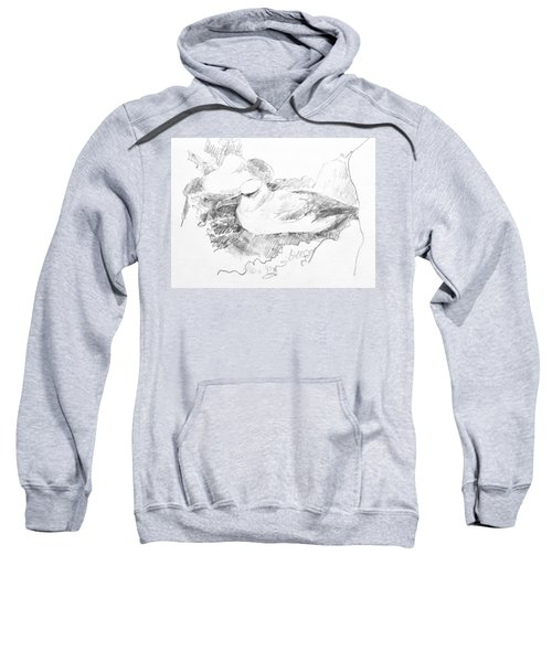 New Zealand White-capped Mollymawk Sweatshirt