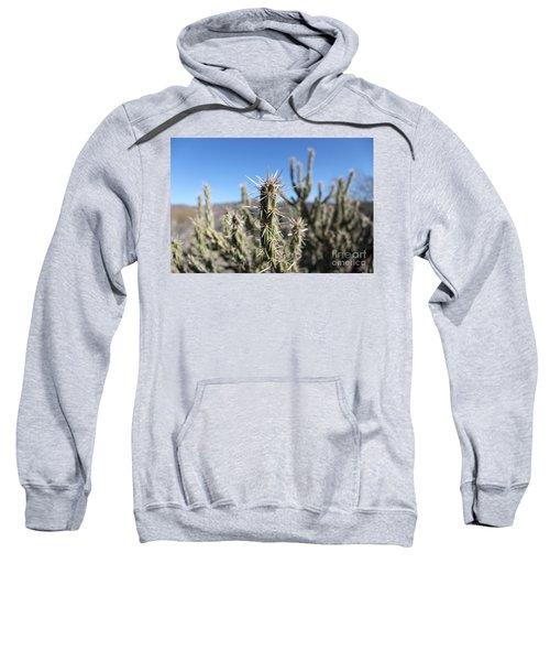 Ocotillo Sweatshirt