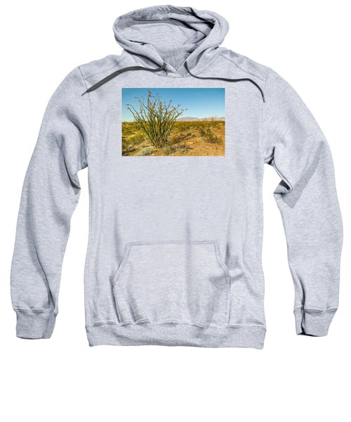 Ocotillo Sweatshirt