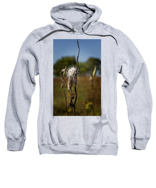 October Forests Sweatshirt