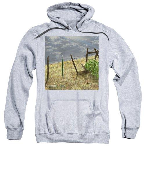 Odd Post Sweatshirt