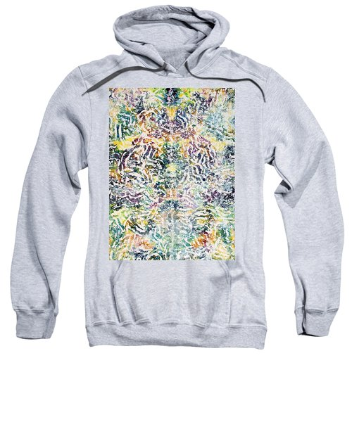 20-offspring While I Was On The Path To Perfection 20 Sweatshirt