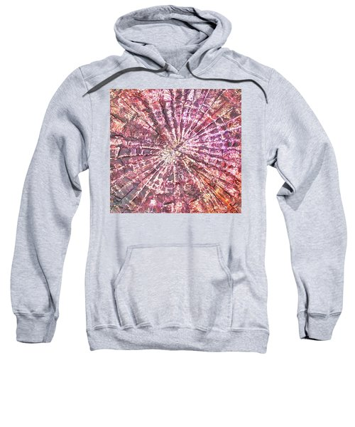 8-offspring While I Was On The Path To Perfection 8 Sweatshirt