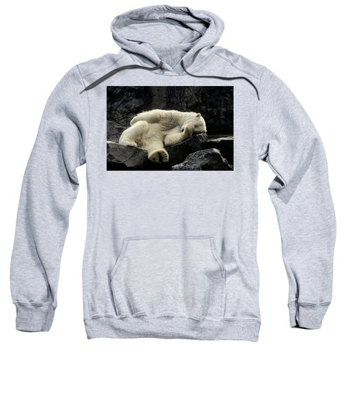 Oh What A Night Polar Bear Sweatshirt