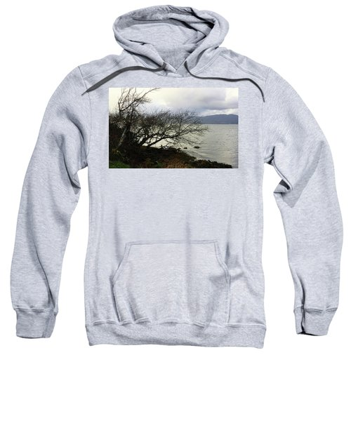 Old Tree By The Bay Sweatshirt