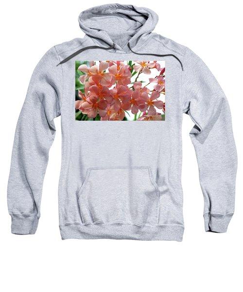Oleander Dr. Ragioneri 4 Sweatshirt