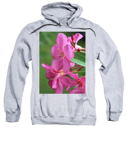 Oleander Maresciallo Graziani 2 Sweatshirt
