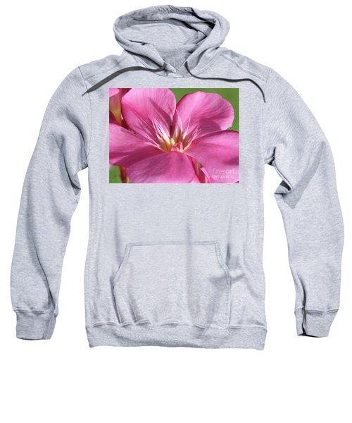 Oleander Maresciallo Graziani 3 Sweatshirt