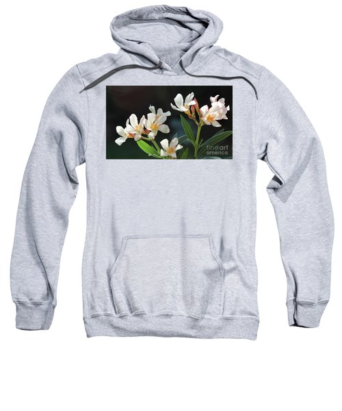 Oleander Petite Salmon 2 Sweatshirt