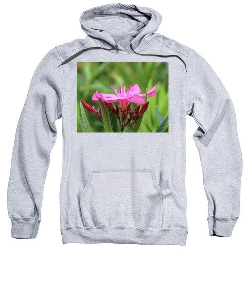 Oleander Professor Parlatore 1 Sweatshirt
