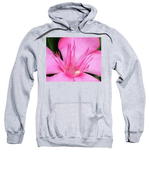 Oleander Professor Parlatore 3 Sweatshirt
