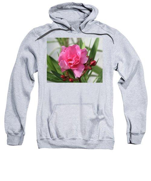 Oleander Splendens Giganteum 1 Sweatshirt