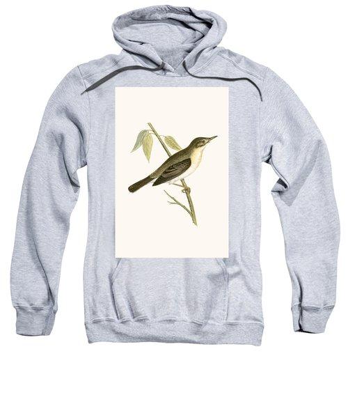 Olivaceous Warbler Sweatshirt