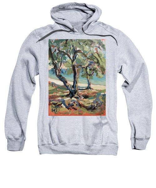 Olive Trees Along Marmari Beach Paxos Sweatshirt